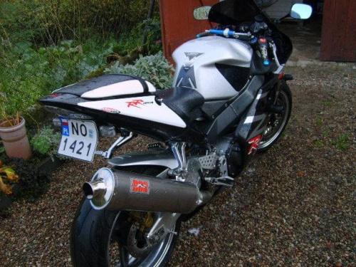 cbr954 2003
