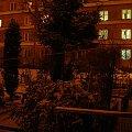 ;-) #praga #warszawa #ogródek #drzewa #zieleń #spokój