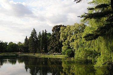 A tak wygląda raj... na ziemi:) #drzewa #drzewo #las #liście #natura #park #przyroda #roślinność #woda #ParkUjazdowski