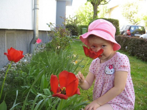Ela i tulipany