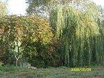 http://images29.fotosik.pl/282/4508435e64757300m.jpg