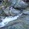 #potok #kamienie #woda #Cypr