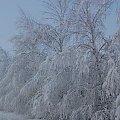 zima #zima #Chełm