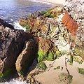 #morze #skały #Hel #las #drzewa #natura #krajobraz #wakacje