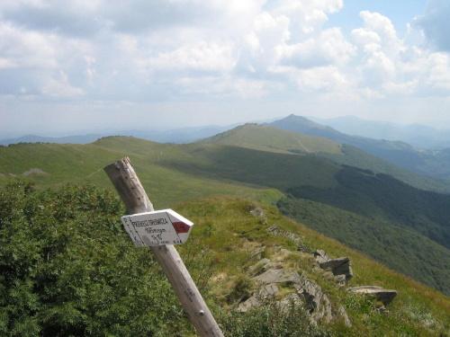 Przełęcz Orłowicza w Bieszczadach