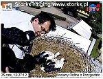 http://images29.fotosik.pl/7/e71484e9f6e90e1am.jpg